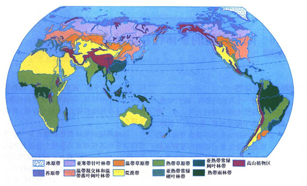 2013高考地理重点地图:世界陆地自然带