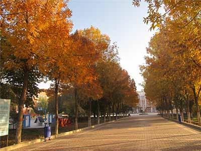 精河县属于哪个市|新疆精河县大河沿子中学