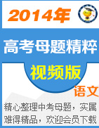 2014年高考语文母题微课系列