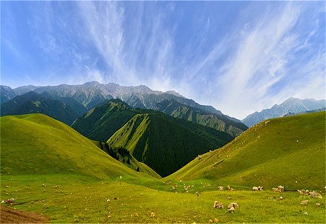 新疆伊犁哹n�f�x�_揭秘中国最美的边境城市:新疆伊犁