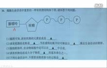 说题课视频 高中生物微课辅导:一道ATP考查试题讲解_标清