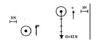 [中考物理必考知识点总结]中考物理知识点总结——常见的力