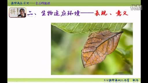 北师大版初中生物会考复习微课:第三课 生物与环境的相互影响02_标清
