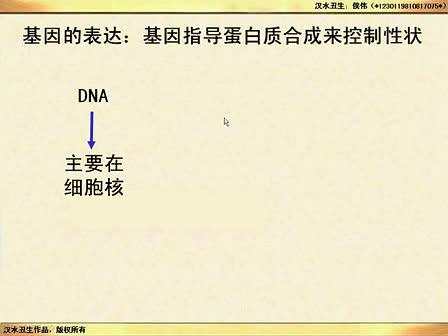 (汉水丑生一轮复习)基因的表达、中心法则_标清