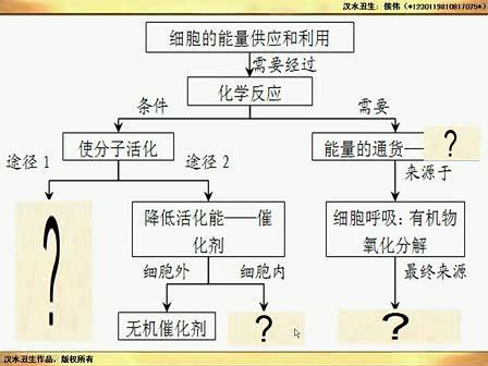 (汉水丑生一轮复习)ATP及习题讲解_标清