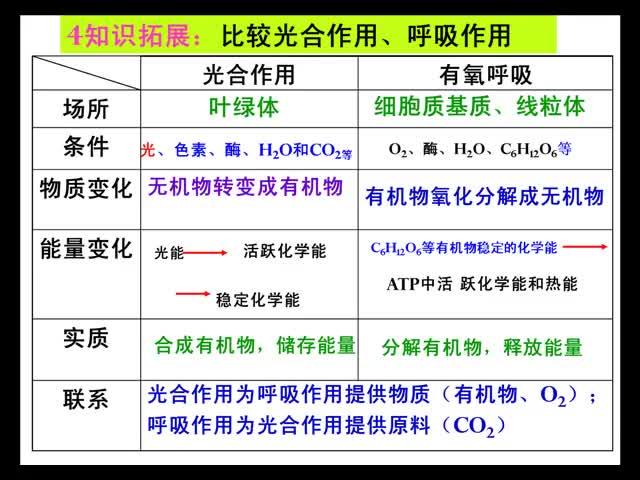 高三生物比较光合作用和呼吸作用-温拜实验高中-王秋华