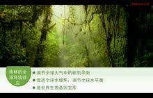 人教版 地理 高二必修三 雨林的全球环境效应—微课 (3份打包)