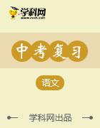 《浙江新中考》2017年中考语文复习课内知识训练课件