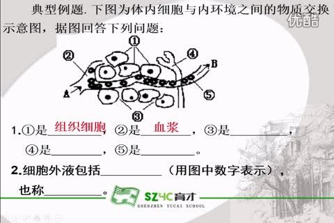 人教版 高二生物 必修三 第1章 人体的内环境与稳态 第1节:细胞生活的环境《习题讲解》