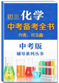 中考辅导系列丛书·初三化学中考备考全书