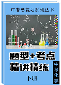 """中考总复习系列丛书•中考化学""""题型 考点""""精讲精练(下册)"""