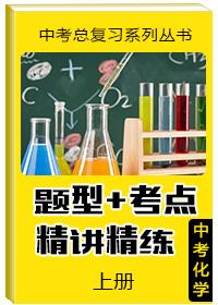 """中考总复习系列丛书•中考化学""""题型 考点""""精讲精练(上册)"""