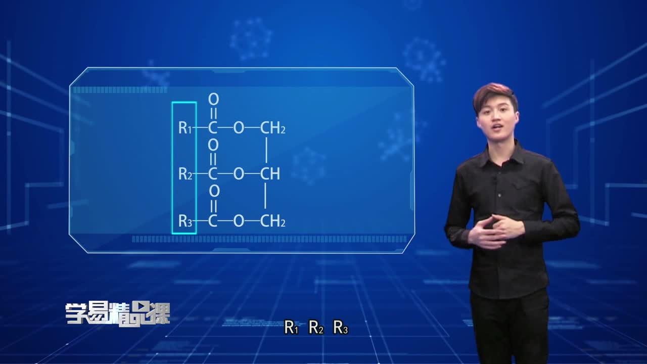 烃的衍生物 油脂 第一讲 油脂及其性质