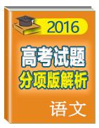 2016年高考+联考模拟语文试题分项版解析