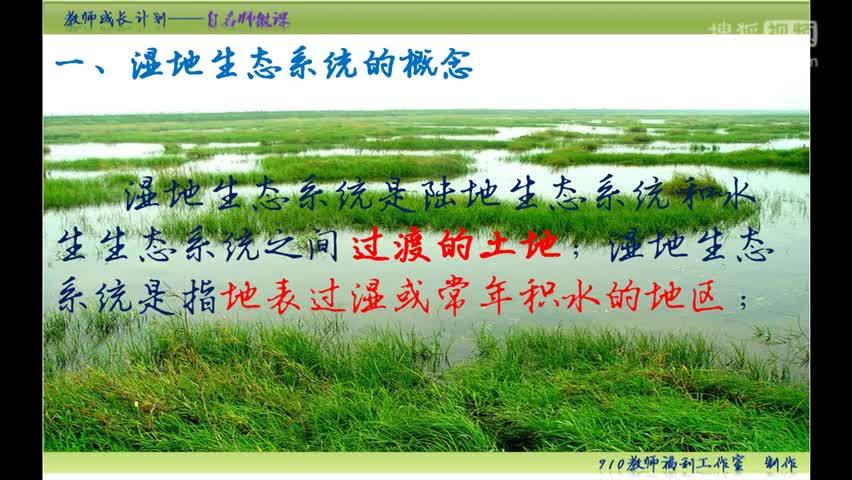 【手掌上的生物课】初中生物中考复习微课:番外篇 湿地生态系统