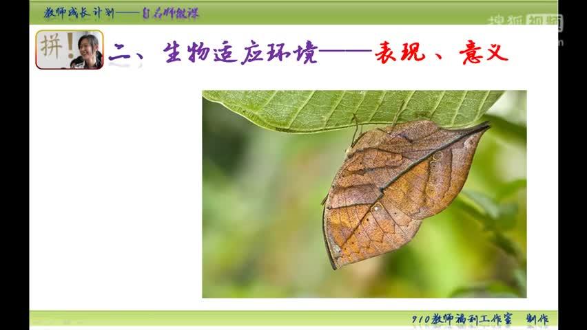 【手掌上的生物课】初中生物中考复习微课:第三集 生物与环境的相互影响(第二课时)