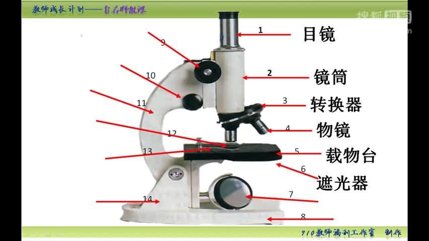 【手掌上的生物课】初中生物中考复习微课:第七集 显微镜的结构