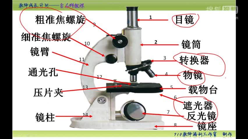 【手掌上的生物课】初中生物中考复习微课:第八集 显微镜的操作步骤