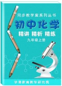 同步教学案系列丛书·初中化学精讲精析精练(九年级上册)