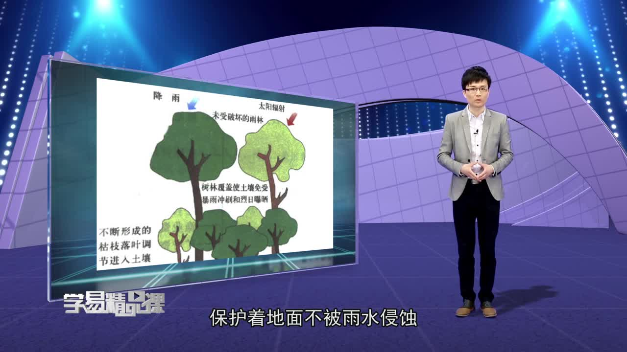 区域生态环境建设 森林的开发和保护--以亚马孙热带雨林为例 第二讲 亚马孙开发计划及其影响