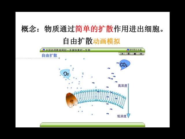 (生物-岑柳元)高二生物:物质跨膜运输的方式