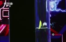 人教版必修一第二章第5节自由落体运动-牛顿管自由落体运动实验(视频)