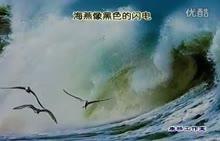 人教版 八年级语文下册 第二单元 第9课:海燕(高尔基)康桥朗诵作品