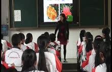 人教版 七年级生物上册 第三单元 第三节:开花和结果-公开课