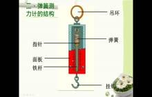 初一科学2.3弹簧测力计的使用