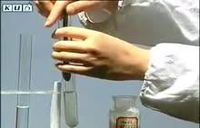 九年级化学:氯化钠与硝酸钾溶解度的比较-实验演示
