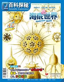 百科探秘·海底世界2017年12月刊