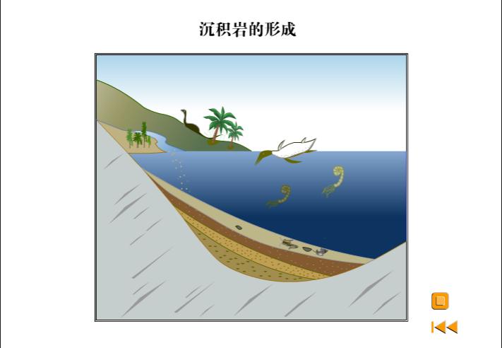 高一地理:沉積巖形成