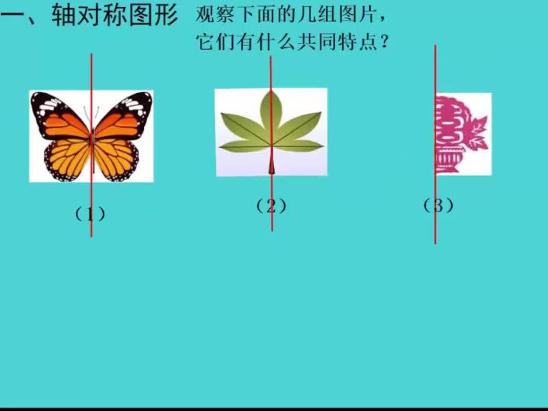 鲁教版(五四制)七年级数学上册 第二章 第3节:轴对称图形和成轴对称