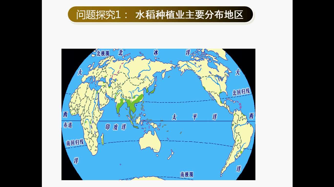 湘教版 高一地理必修二 第三单元 第一节: 水稻种植业-微课堂
