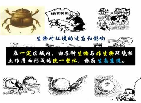 人教版 七年级生物上册 第一单元 第一节:生态系统-名师示范课