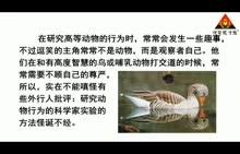 人教版 七年级语文上册(2016)第五单元 第19节 动物笑谈(朗读)-视频素材