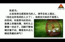 人教版 七年级语文上册(2016)第五单元 第18节 鸟(朗读)-视频素材