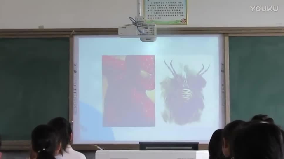 语文出版社 七年级语文下册 14课:蜘蛛-公开课