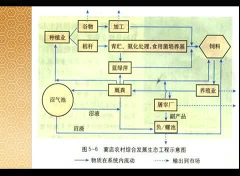 人教版 高二生物选修三 5.2 生态工程的实例和发展前景-名师示范课