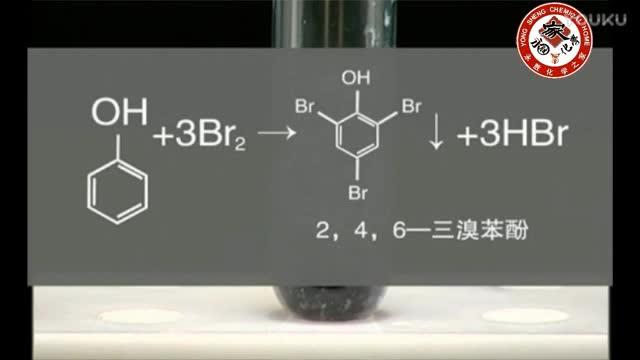 高中实验204-苯酚的取代反应-实验演示