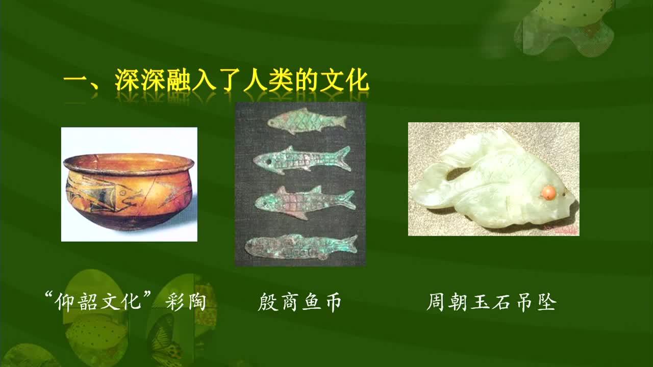 【名校名师微课】八年级上生物(人教版)核心知识名师讲解视频:鱼类与人类生活的关系