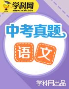 湖南省10市2017年中考语文试卷按考点分项汇编