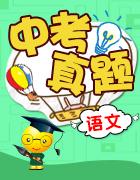 四川省11市2017年中考语文试卷按考点分项汇编