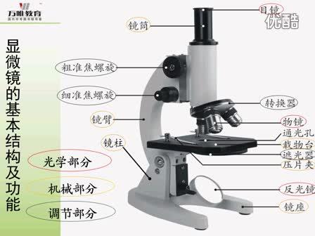 人教版 七年级生物—识图微课·显微镜的结构-微课堂