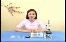 人教版 七年级生物上册 第二单元 第二章 第四节:观察草履虫实验-视频素材