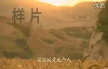湘教版八年级下册地理8.5黄土高原的区域发展与居民生活(43张PPT+4个视频) (5份打包)