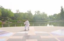 武术——四十二式太极拳-视频微课堂