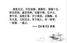 部编版 八年级语文上册 《短文两篇》第2课 闲人苏轼-视频微课堂