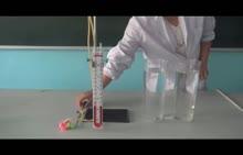 人教版 九年级物理 研究液体内部的压强-实验演示