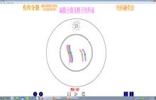 人教版 高中生物 必修2  2.1《减数分裂与有丝分裂》-视频微课堂